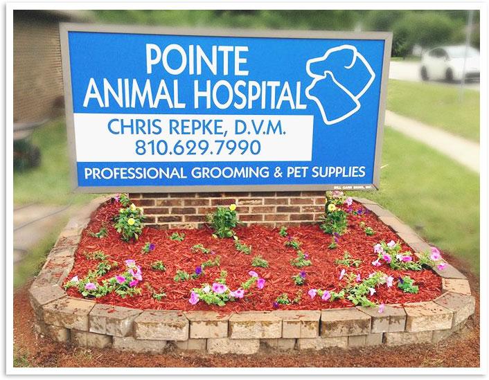 Pointe Animal Hospital